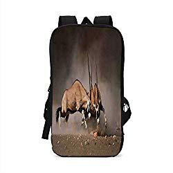 Wildlife Decor Stylish Compatible with iPad Backpack,Fight Battle Between Two Gemsbok on Plains of Etosha Namibia Savage Safari for School Office,One Size